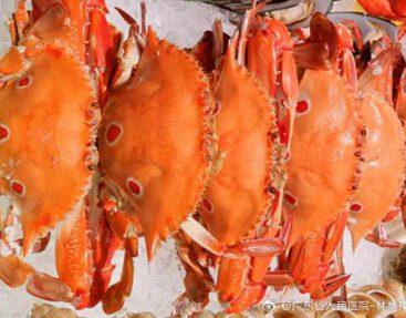 水蟹肉片冬瓜湯